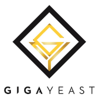 BELGIAN ABBEY ALE Yeast from GigaYeast