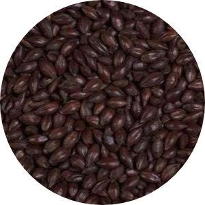 Black Barley Image