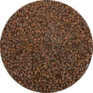 Brown Malt Image