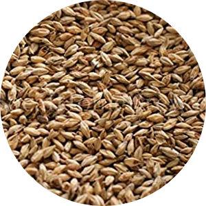 Honey Malt Image