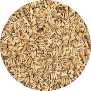 Malted Oats Image